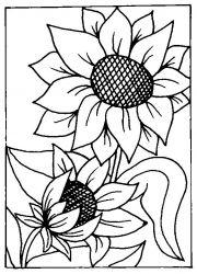 plansa de colorat floarea soarelui de colorat p09