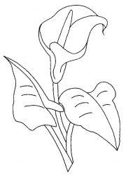 plansa de colorat flori cale de colorat p02