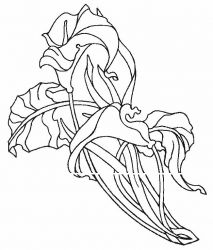 plansa de colorat flori cale de colorat p06