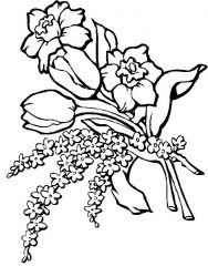 plansa de colorat flori de colorat p02