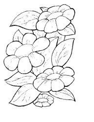 plansa de colorat flori de colorat p03