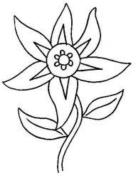 plansa de colorat flori de colorat p08