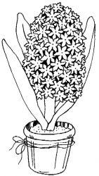 plansa de colorat flori de colorat p107