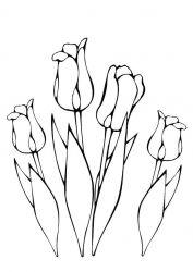 plansa de colorat flori de colorat p62