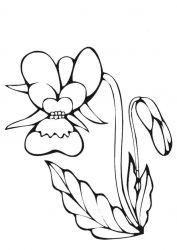 plansa de colorat flori de colorat p80