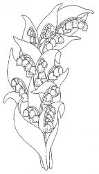 plansa de colorat flori lacramioare de colorat p02