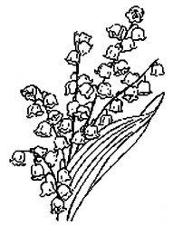 plansa de colorat flori lacramioare de colorat p11