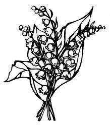 plansa de colorat flori lacramioare de colorat p22