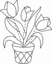 plansa de colorat flori lalele de colorat p16