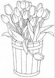 plansa de colorat flori lalele de colorat p25