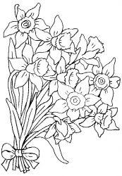 plansa de colorat flori narcise de colorat p02
