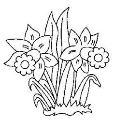 plansa de colorat flori narcise de colorat p12