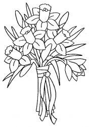 plansa de colorat flori narcise de colorat p13
