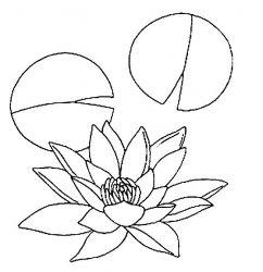 plansa de colorat flori nuferi de colorat p03