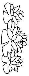 plansa de colorat flori nuferi de colorat p05