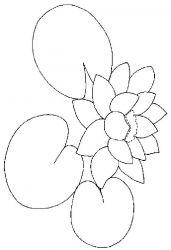 plansa de colorat flori nuferi de colorat p13