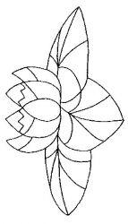 plansa de colorat flori nuferi de colorat p16