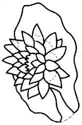 plansa de colorat flori nuferi de colorat p22