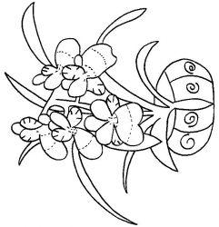 plansa de colorat flori orhidee de colorat p07