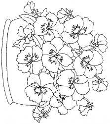 plansa de colorat flori panselute de colorat p02