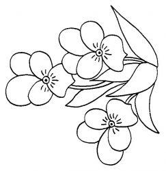 plansa de colorat flori panselute de colorat p09