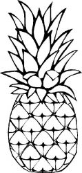 plansa de colorat fructe ananas de colorat p02