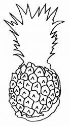plansa de colorat fructe ananas de colorat p03
