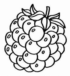 plansa de colorat fructe de colorat p13