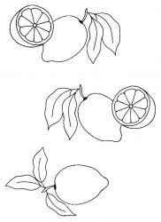 plansa de colorat fructe lamaie de colorat p11