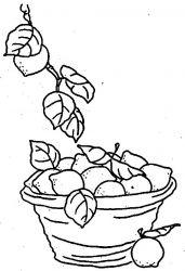 plansa de colorat fructe lamaie de colorat p16