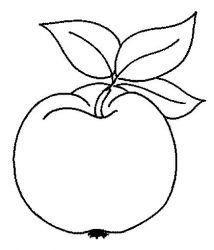 plansa de colorat fructe mere de colorat p06