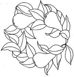 plansa de colorat fructe pere de colorat p12