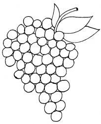 plansa de colorat fructe struguri de colorat p01