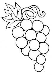 plansa de colorat fructe struguri de colorat p03