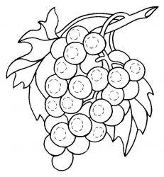plansa de colorat fructe struguri de colorat p08
