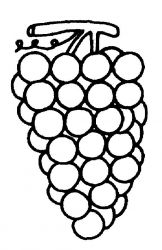 plansa de colorat fructe struguri de colorat p10