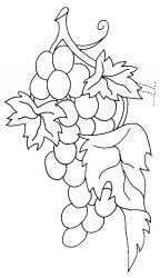 plansa de colorat fructe struguri de colorat p15