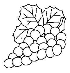 plansa de colorat fructe struguri de colorat p21