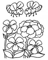 plansa de colorat insecte albinute de colorat p10