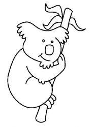 plansa de colorat koala de colorat p02