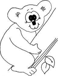 plansa de colorat koala de colorat p03