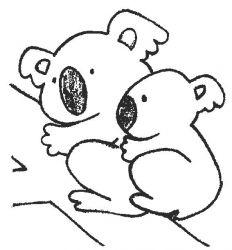 plansa de colorat koala de colorat p05