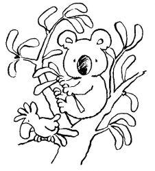 plansa de colorat koala de colorat p09