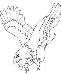 plansa de colorat pasari de colorat p02