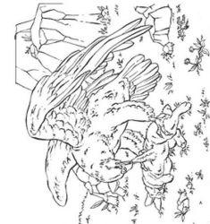 plansa de colorat pasari de colorat p06