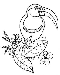plansa de colorat pasari de colorat p107