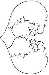 plansa de colorat sfantul valentin de colorat p73