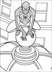 plansa de colorat spiderman de colorat p42
