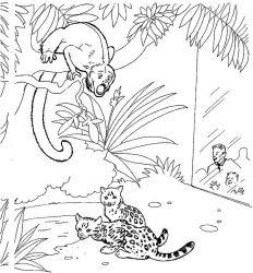 plansa de colorat zoo de colorat p09