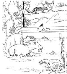plansa de colorat zoo de colorat p15